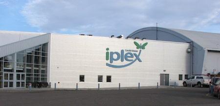 Le Credit Union i-plex accueillera les meilleures équipes de curling féminin du monde en 2016.